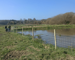 Fencing Around Pond